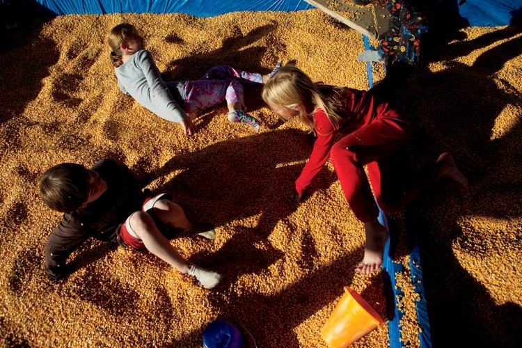Corn box instead of a sandbox at a corn maze in Indiana