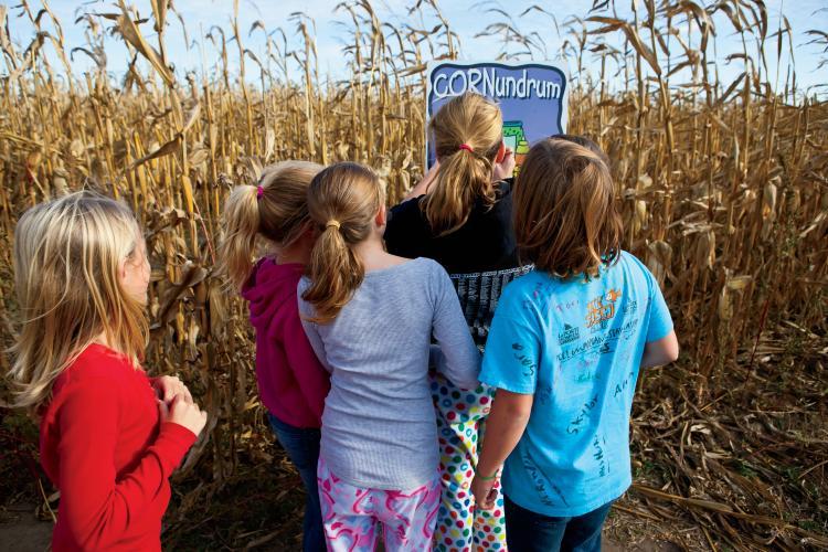 Kids explore Guse Corn Maze in Indiana