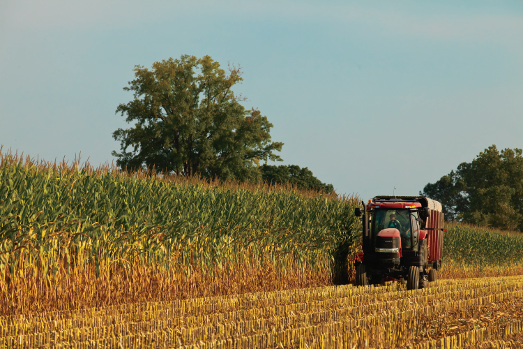 Farm Focus: Facts About Indiana Farmers