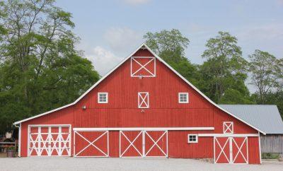 Dull's Tree Farm