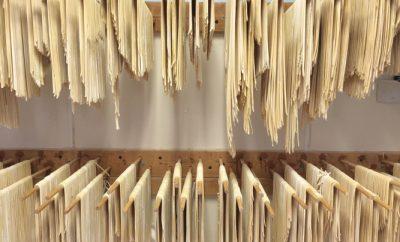 Coe's Noodles