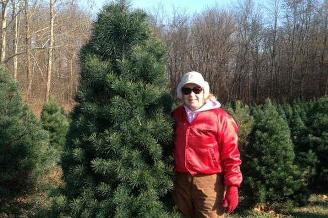 Cottrell's Christmas Trees