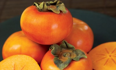 Lehman Farms; Terre Haute Farms; Indiana Persimmons; Indiana Farms; Lehman