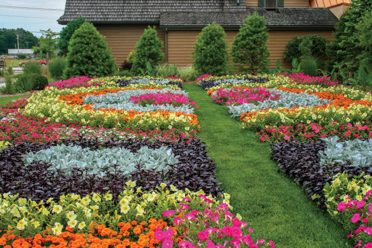 Image Result For House And Garden Quilts